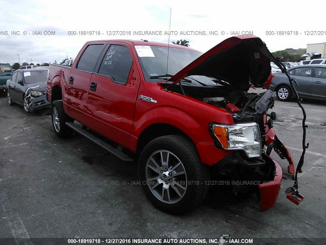 2014 FORD F150, 18919718 | IAA-Insurance Auto Auctions